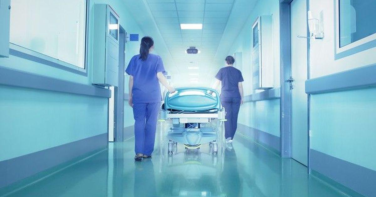 Фото В ростовском госпитале, где умерли 13 пациентов, нашли новые нарушения