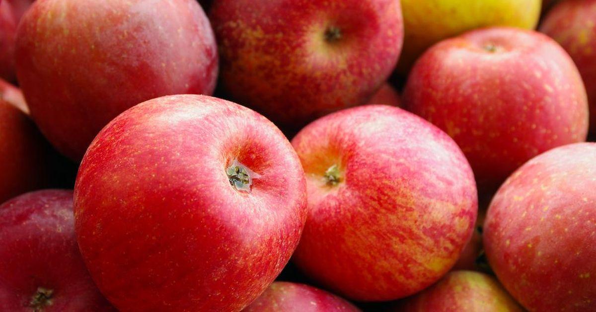 Фото В Москве уничтожили более полутора тонн яблок из Азербайджана